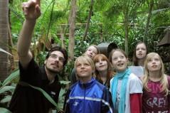 Biosphäre Potsdam - die geheimnisvolle Tropenwelt vor den Toren Berlins